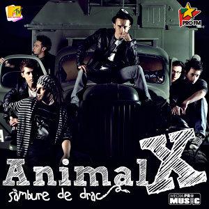 Animal X 歌手頭像