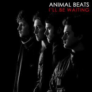 Animal Beats 歌手頭像