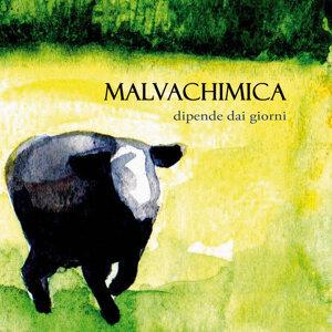 Malvachimica 歌手頭像