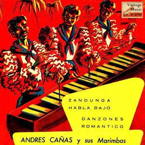 Andrés Cañas 歌手頭像