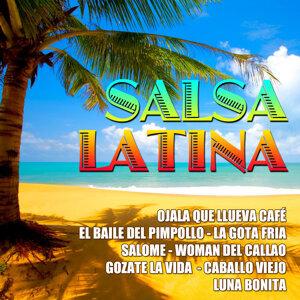 The Salsa Stars 歌手頭像