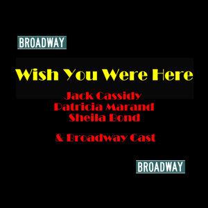 Jack Cassidy, Sheila Bond & Cast 歌手頭像