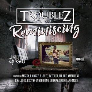 Troublez 歌手頭像