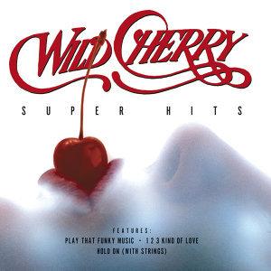 Wild Cherry 歌手頭像