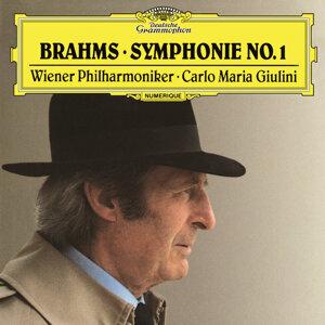 Carlo Maria Giulini,Wiener Philharmoniker 歌手頭像