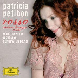 Venice Baroque Orchestra,Patricia Petibon,Andrea Marcon 歌手頭像