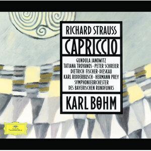 Symphonieorchester des Bayerischen Rundfunks,Karl Böhm 歌手頭像