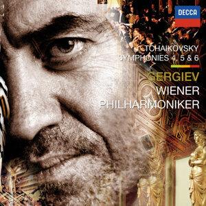 Wiener Philharmoniker,Valery Gergiev 歌手頭像