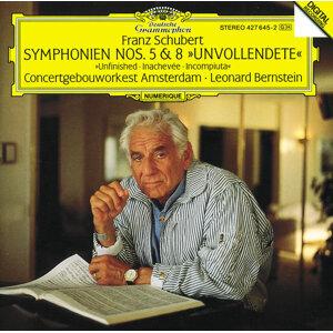 Leonard Bernstein,Royal Concertgebouw Orchestra