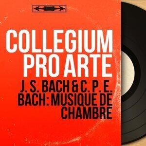 Collegium Pro Arte 歌手頭像