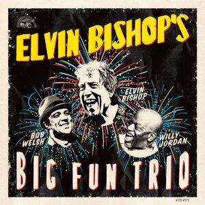 Elvin Bishop (英文夏比) 歌手頭像