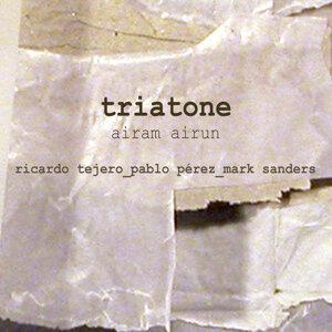 Triatone 歌手頭像