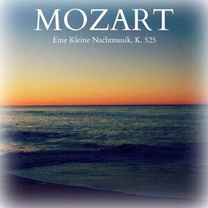 Victor Desarzens & Vienna State Opera Orchestra 歌手頭像