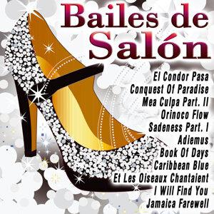 La Banda Del Baile 歌手頭像