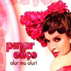 Pınar Eliçe 歌手頭像