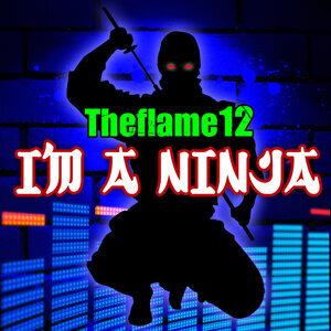 Theflame12 歌手頭像