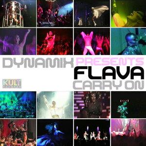 Dynamix Presents Flava 歌手頭像