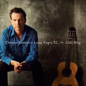 Ottmar Liebert   Luna Negra XL 歌手頭像