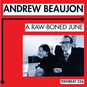 Andrew Beaujon 歌手頭像