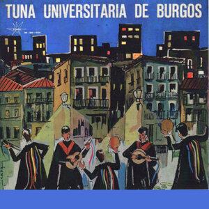 Tuna De Burgos 歌手頭像