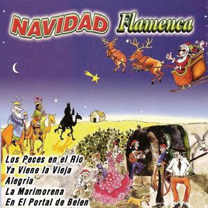 Los Flamenquitos Navideños 歌手頭像