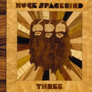 Huge Spacebird 歌手頭像