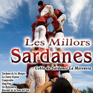 Cobla de Sardanas La Moreneta 歌手頭像
