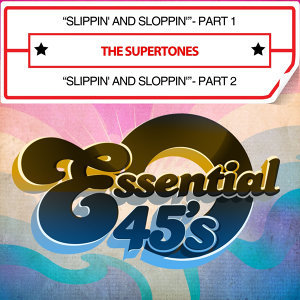 The Supertones 歌手頭像