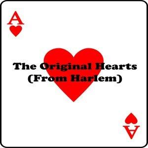 The Hearts 歌手頭像
