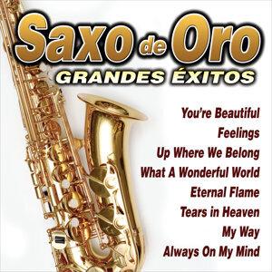 Sax Gold 歌手頭像