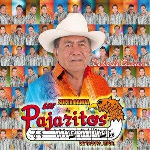 Los Pajaritos De Tacupa 歌手頭像