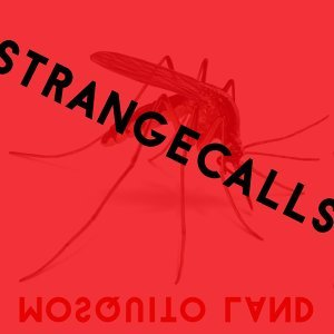 Strange Calls 歌手頭像