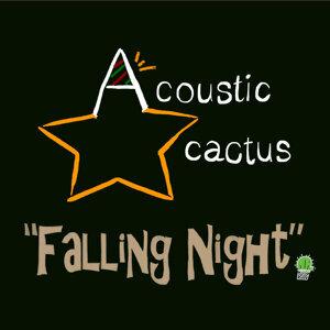 Acoustic Cactus 歌手頭像
