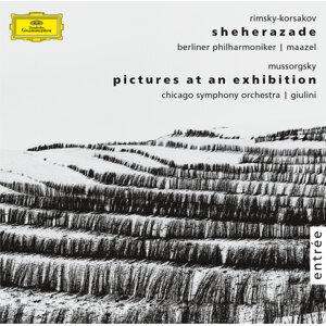 Carlo Maria Giulini,Leon Spierer,Berliner Philharmoniker,Lorin Maazel,Chicago Symphony Orchestra 歌手頭像