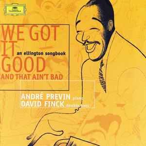 André Previn,David Finck 歌手頭像