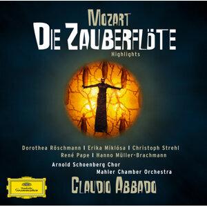 Mahler Chamber Orchestra,Claudio Abbado 歌手頭像