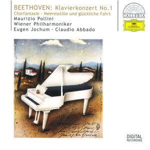 Claudio Abbado,Wiener Philharmoniker,Eugen Jochum 歌手頭像