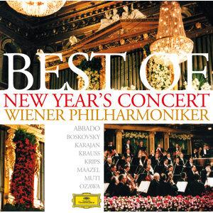 Herbert von Karajan,Wiener Philharmoniker,Lorin Maazel,Claudio Abbado 歌手頭像