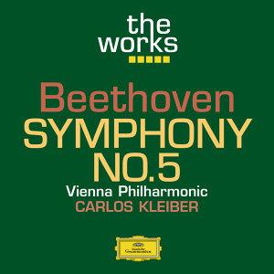 Carlos Kleiber,Wiener Philharmoniker 歌手頭像