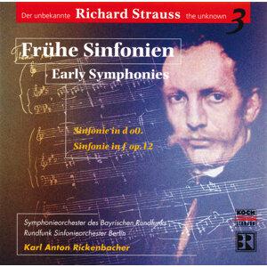 Rundfunk-Sinfonieorchester Berlin,Karl Anton Rickenbacher,Symphonieorchester des Bayerischen Rundfunks 歌手頭像