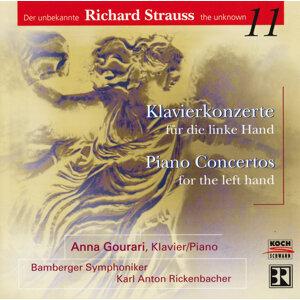 Karl Anton Rickenbacher,Bamberger Symphoniker,Anna Gourari 歌手頭像