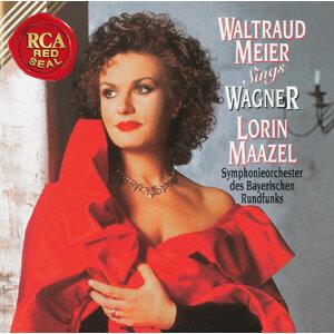 Waltraud Meier, Daniel Barenboim and Orchestre de Paris 歌手頭像