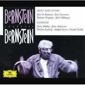 London Symphony Orchestra,Orchestra,Leonard Bernstein 歌手頭像