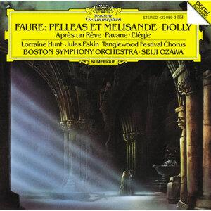 Tanglewood Festival Chorus,Jules Eskin,Seiji Ozawa,Boston Symphony Orchestra,Lorraine Hunt 歌手頭像