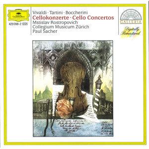 Paul Sacher,Collegium Musicum Zurich,Mstislav Rostropovich,Alexandre Stein,Martin Derungs 歌手頭像