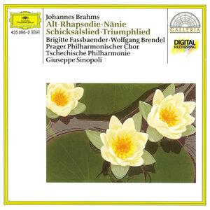Lubomir Matl,Prague Philharmonic Chorus,Brigitte Fassbaender,Wolfgang Brendel,Giuseppe Sinopoli,Czech Philharmonic Orchestra 歌手頭像