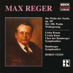 Horst Stein,Chor der Bamberger Symphoniker 歌手頭像