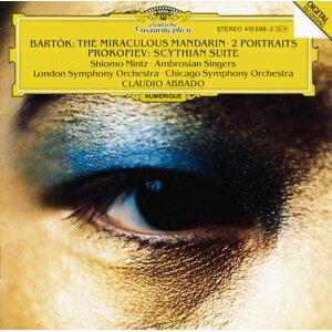 Claudio Abbado,The Ambrosian Singers,Chicago Symphony Orchestra,Shlomo Mintz,London Symphony Orchestra 歌手頭像