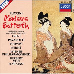 Robert Kerns,Michel Sénéchal,Christa Ludwig,Mirella Freni,Herbert von Karajan,Luciano Pavarotti,Wiener Philharmoniker 歌手頭像