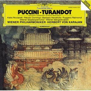 Ruggero Raimondi,Barbara Hendricks,Wiener Philharmoniker,Herbert von Karajan,Plácido Domingo,Katia Ricciarelli 歌手頭像